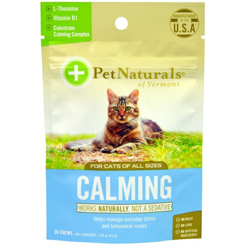 Medium Of Rescue Remedy For Cats