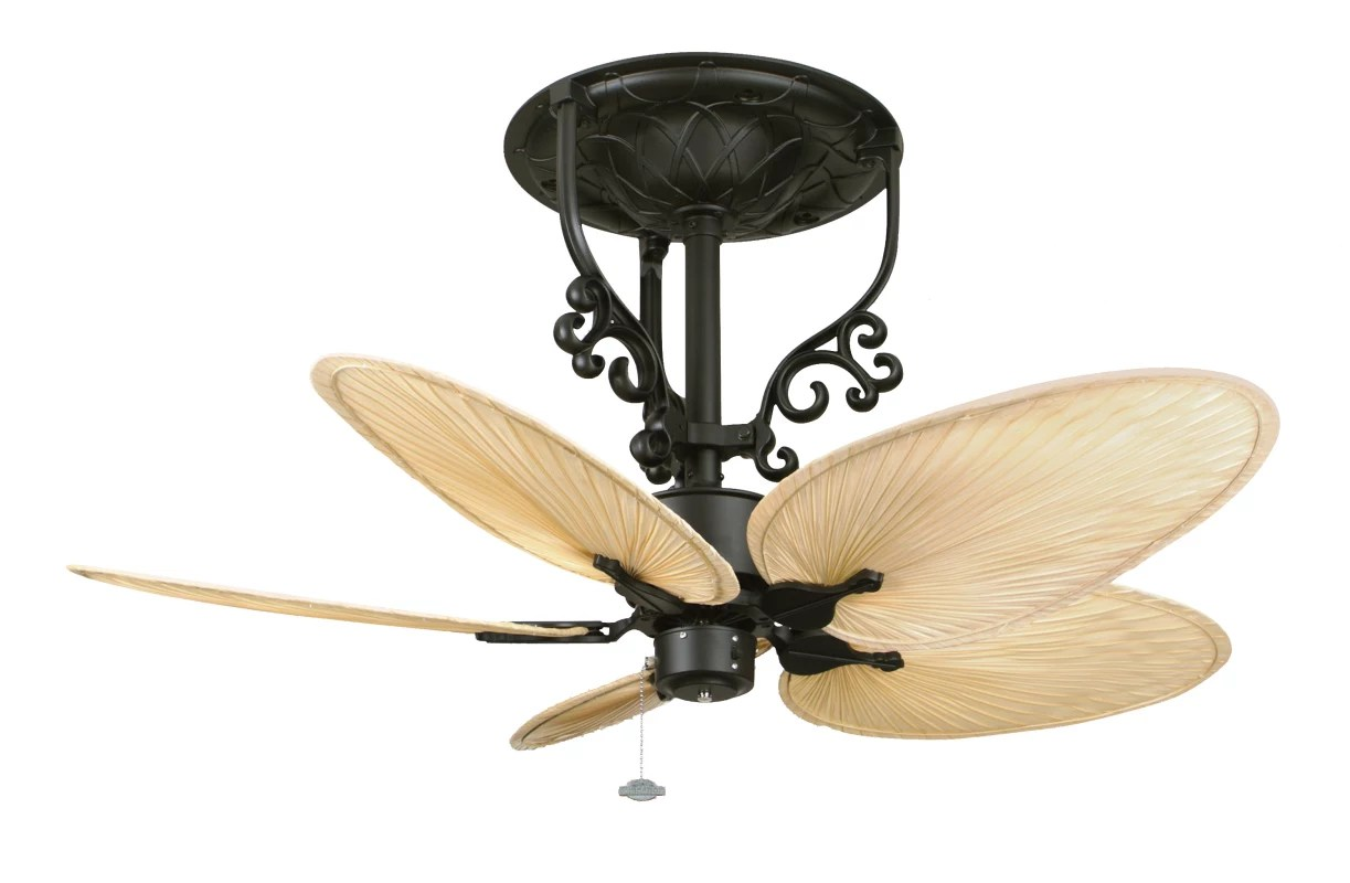 Leaf Style Ceiling Fans Fanimation Black With Natural Oval Palm Leaf Blades