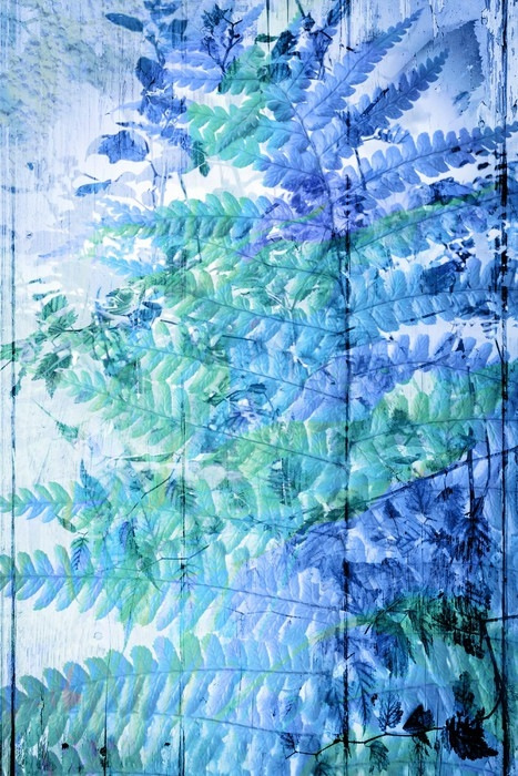 Exotic flowers in blue, artistic background Wall Mural \u2022 Pixers