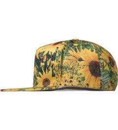 P.A.M. Helianthus P.A.M. Hat Model Picutre