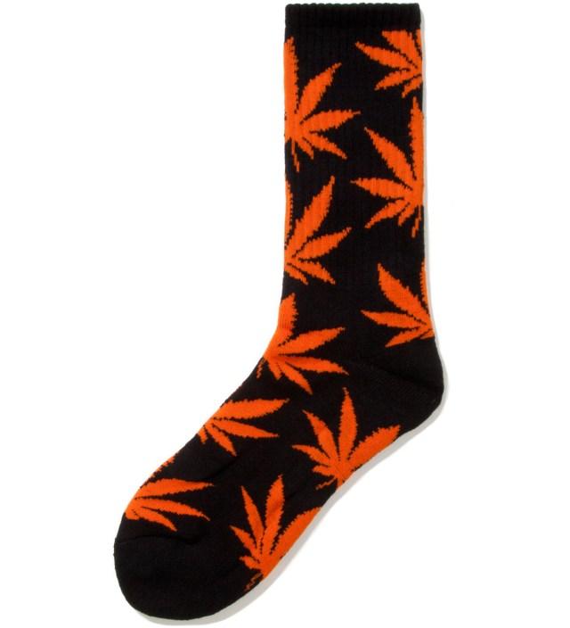 Black/Orange Halloween Plantlife Socks