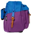 Purple/Cobalt Eighteen Hipsack
