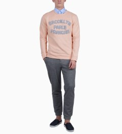 BWGH Salmon/Blue Brooklyn Parle FR2 Sweater Model Picutre