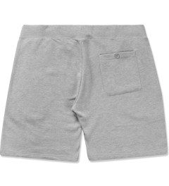 Stussy Heather Grey 8 Ball Sweatshorts Model Picutre