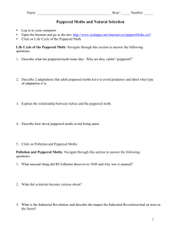 worksheet. Peppered Moth Simulation Worksheet Answers ...