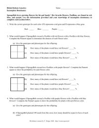 worksheet. Spongebob Genetics Worksheet Answers. Worksheet ...