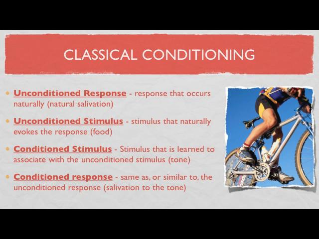 lecture-on-classical-conditioninghtml in scheidleragithub - examples of classical conditioning