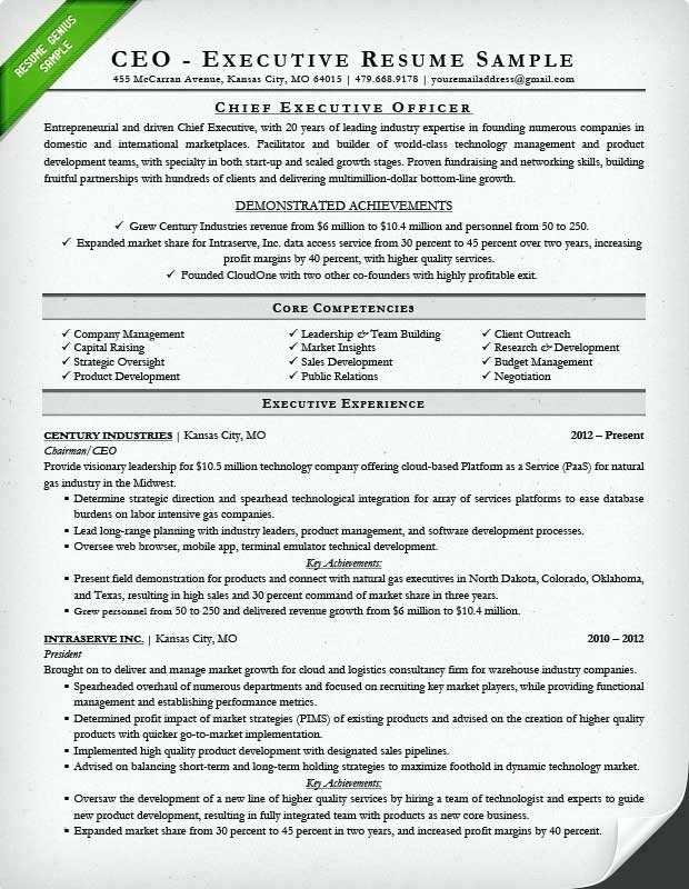 Curriculum Vitae Template for Research