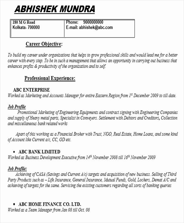 Cv Sample for Bank Job