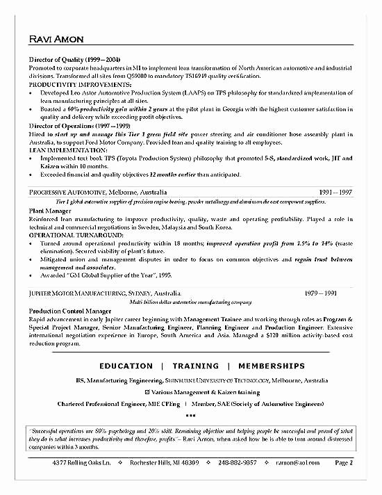 Professional Engineering Cv Examples