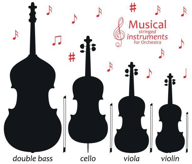 Diagram Of A Cello