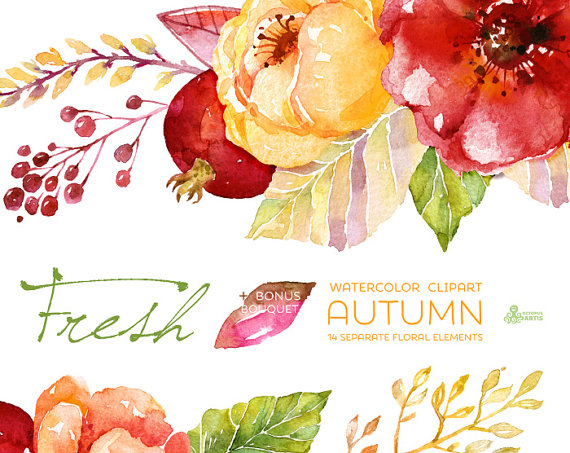 Cute Rustic Fall Wallpapers For Laptop Fresh Autumn Elements Clipart Bouquet Handpainted