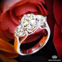 "Platinum ""Butterflies"" 3 Stone Engagement Ring (Setting"