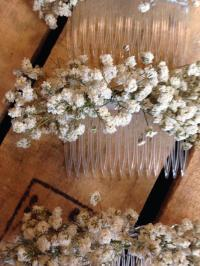 Dried Gypsophila Baby's Breath Ladies Hair Comb Slide ...