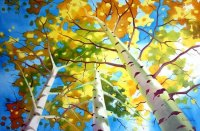BIRCH TREES SKY - Art Print From Original Oil Painting ...