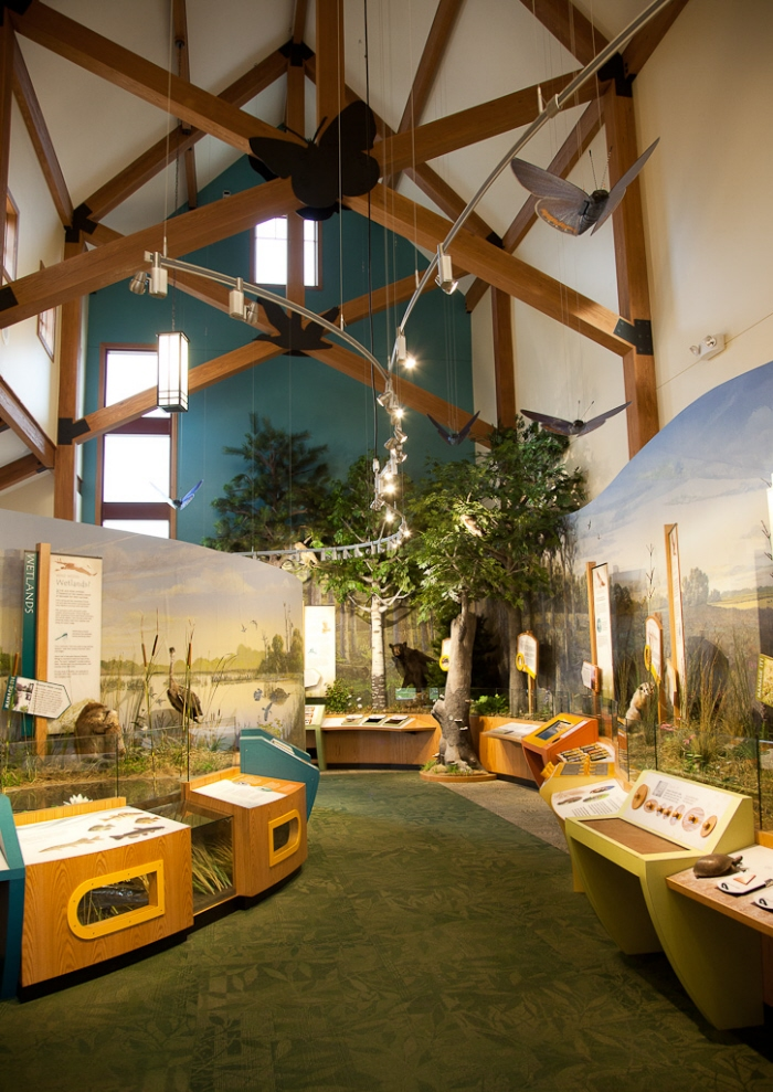 Interior Designers Atlanta Nature & Wildlife Visitor Centers By Lauren Gisel At
