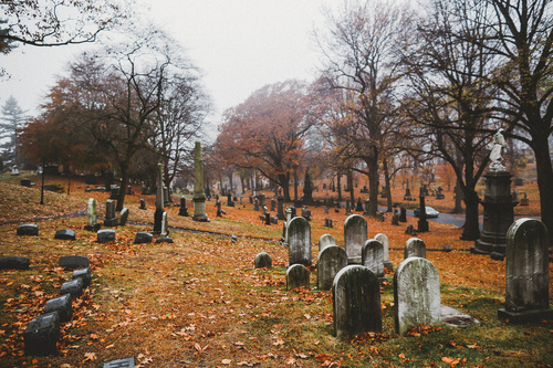 Falling Leaves Wallpaper For Iphone Cemetery Via Tumblr Image 2175464 By Maria D On Favim Com