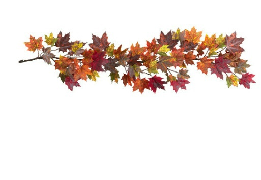 Fall Out Boy Wallpaper Iphone 5 Autumn Fall Indie Overlay Png Image 3698974 By