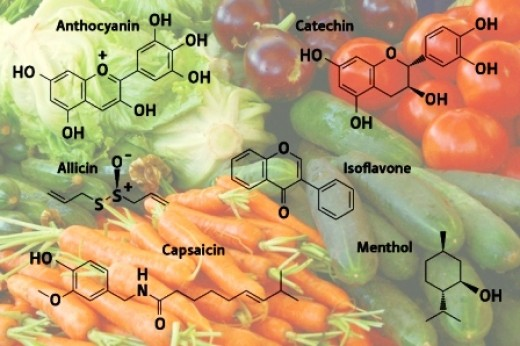 Primary and Secondary metabolites Plant Science 4 U