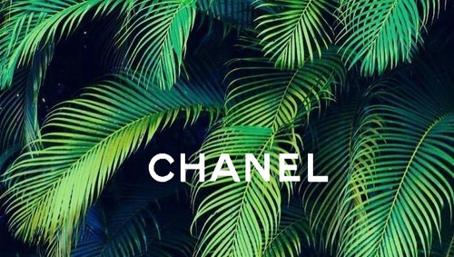 Rich Quotes Wallpaper Best Chanel Cute Design Fashion Green Love Nature