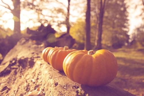 Seasonal Fall Coffee Desktop Wallpaper Art Autumn Country Fall Image 570308 On Favim Com