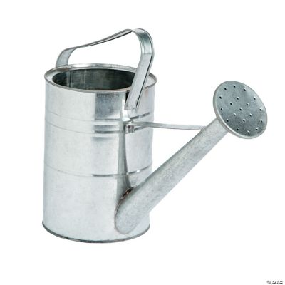 Galvanized Watering Cans Home Decor Accents Holiday Decorations And Accessories