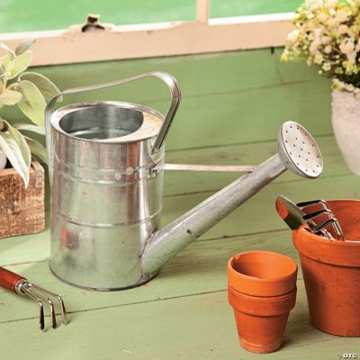 Galvanized Watering Cans Galvanized Watering Can Oriental Trading Discontinued