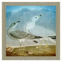 Buy Seagulls Wall Art from Bed Bath & Beyond