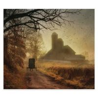 Amish Country Canvas Wall Art - Bed Bath & Beyond