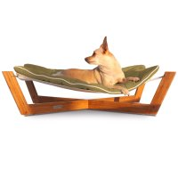 Elevated Dog Beds: Raised Dog Beds & Cots | Petco
