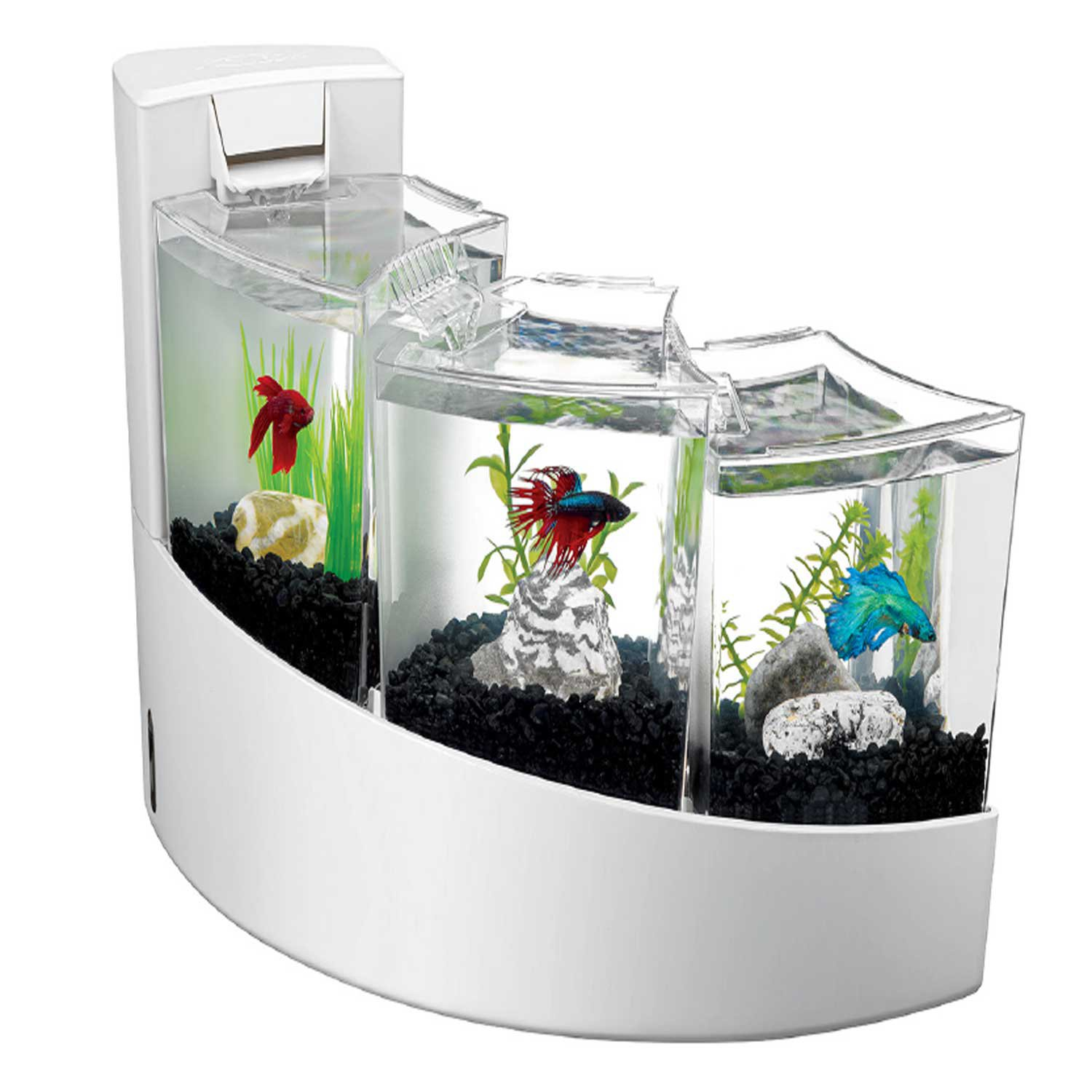 Décoration Aquarium Pour Combattant Aqueon Betta Falls Aquarium Kit In White Petco