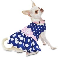 Dog Clothes Puppy Dog Outfits Apparel Petco | All ...