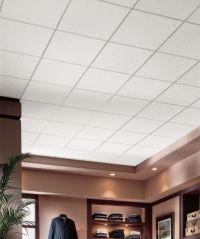 DUNE - 1775 | Armstrong Ceiling Solutions  Commercial