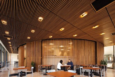 Painted Wood Ceilings Wood Ceilings Planks Panels Armstrong Ceiling Solutions