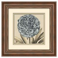 Buy Transitional Bloom 2 Framed Wall Art from Bed Bath ...