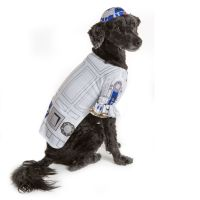 Dog Costumes: Shop Small & Large Dog Costumes