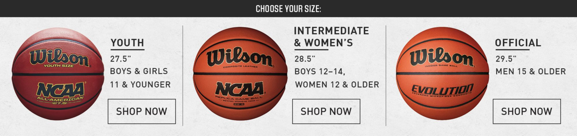 Basketball Ball Basketballs Best Price Guarantee At Dick S