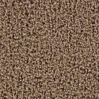 Martha Stewart Living Balmoral Ganache Carpet - Per Sq. Ft ...