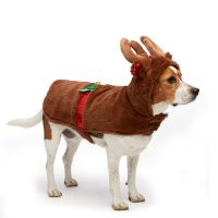 Buy Dog Costumes Online | Pet Costumes | Shechosethedog