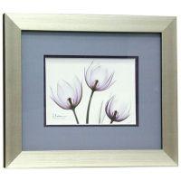 Buy X-Ray Blackberry Floral 11-Inch x 13-Inch Wall Art ...