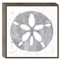 Buy Silver Sea Life Sand Dollar Shell Framed Wall Art from ...