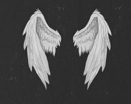 Supernatural Iphone Wallpaper Angel Angel Wings Grunge On The Wall Wall Image
