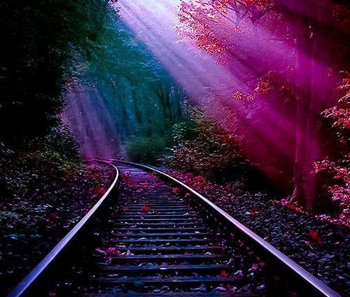 Cute Fairy Girl Wallpapers The Railroad Track Forest Image 1299333 By Korshun On