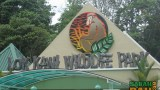 The Lok Kawi Wildlife Park zoo in Kota Kinabalu