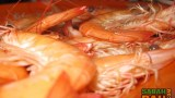 Steamed prawns. The healthier alternative to Seri Selera Kg Air's butter prawns.