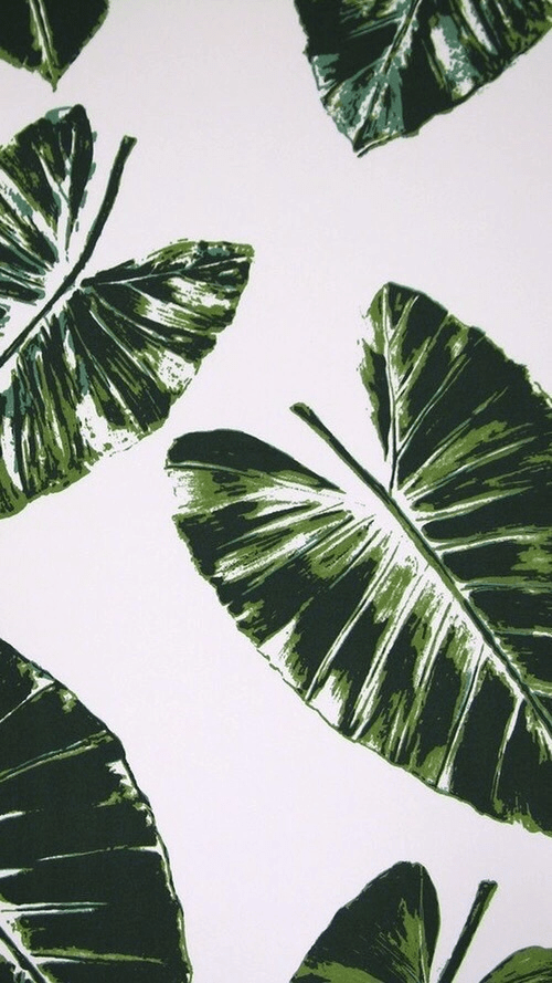 Fall Leaves Wallpaper Macbook 25 Wallpapers Para Personalizar Seu Celular Sabrina
