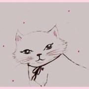 yeux-de-chat