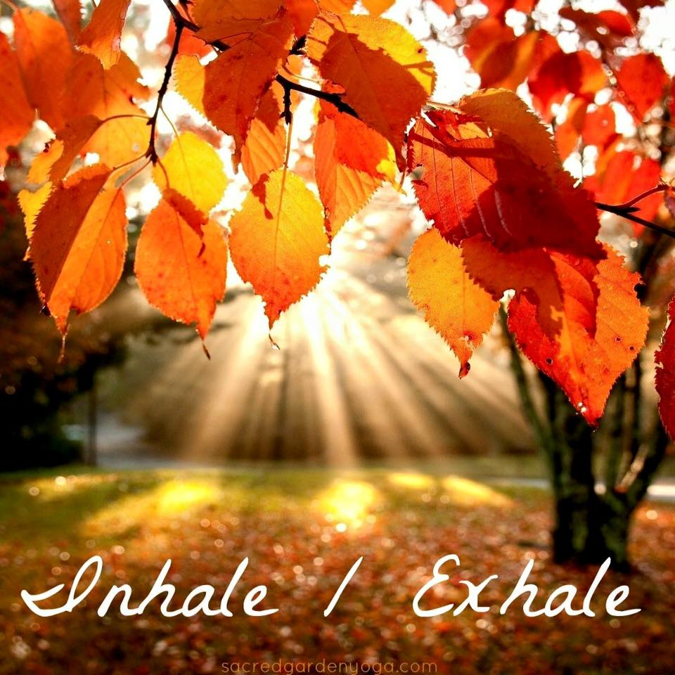 Autumn Falling Leaves Live Wallpaper Ease Into Autumn Don T Fall Sacred Garden Yoga
