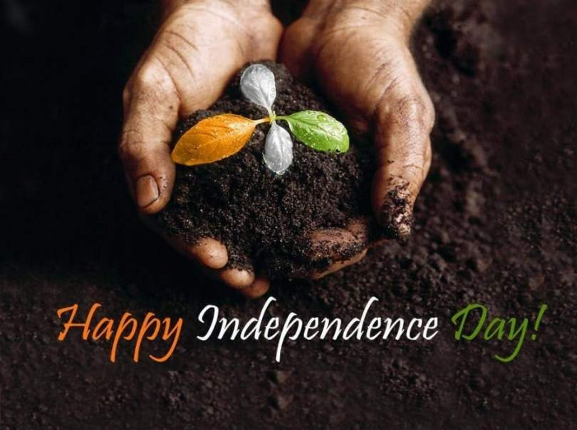 120+ Happy Independence status And Quotes 2016