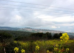 City-of-Safed-from-a-distance